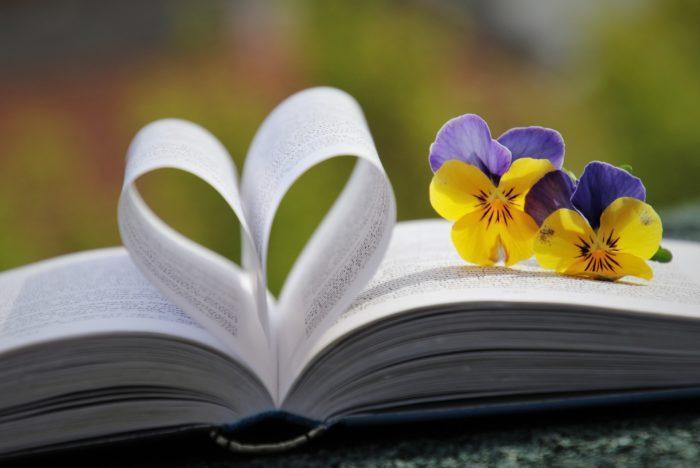 Kirja ja kukkia